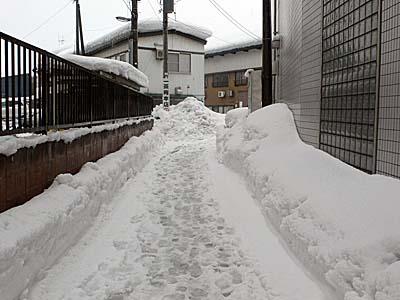 新庄から一茶庵までの道 雪道